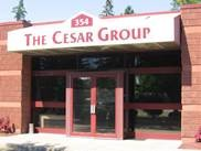 About The Cesar Group, Inc